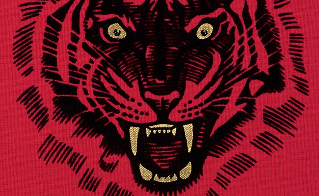 Detail of the front cover tiger illustration for Sharpe's Tiger, The Folio Society