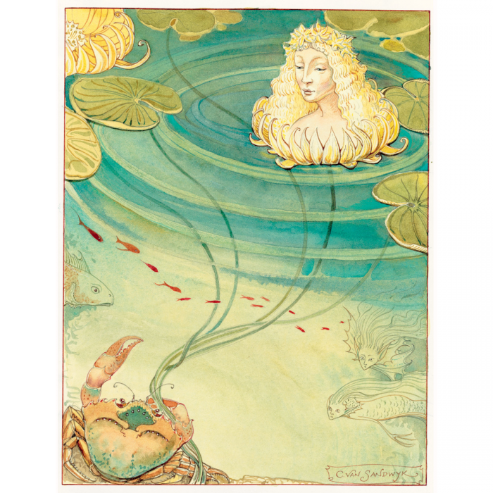 Image of The Blue Fairy Book book