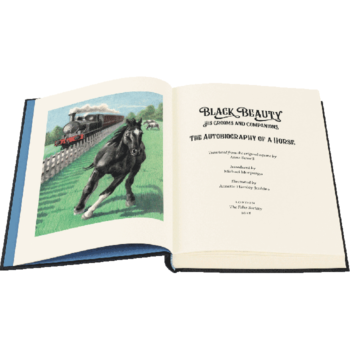 Image of Black Beauty book