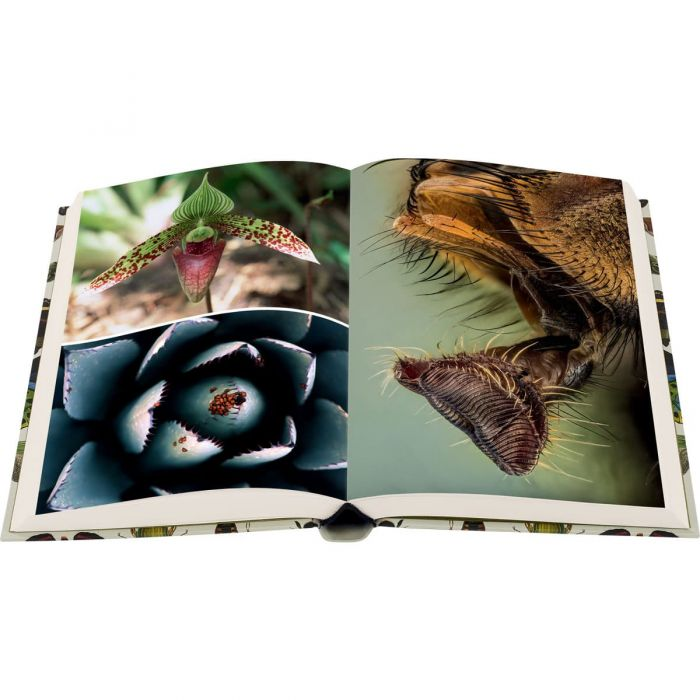 Image of The Diversity of Life book