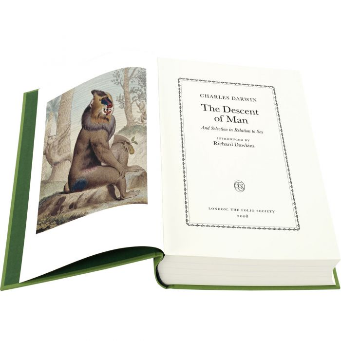 Image of The Descent of Man book