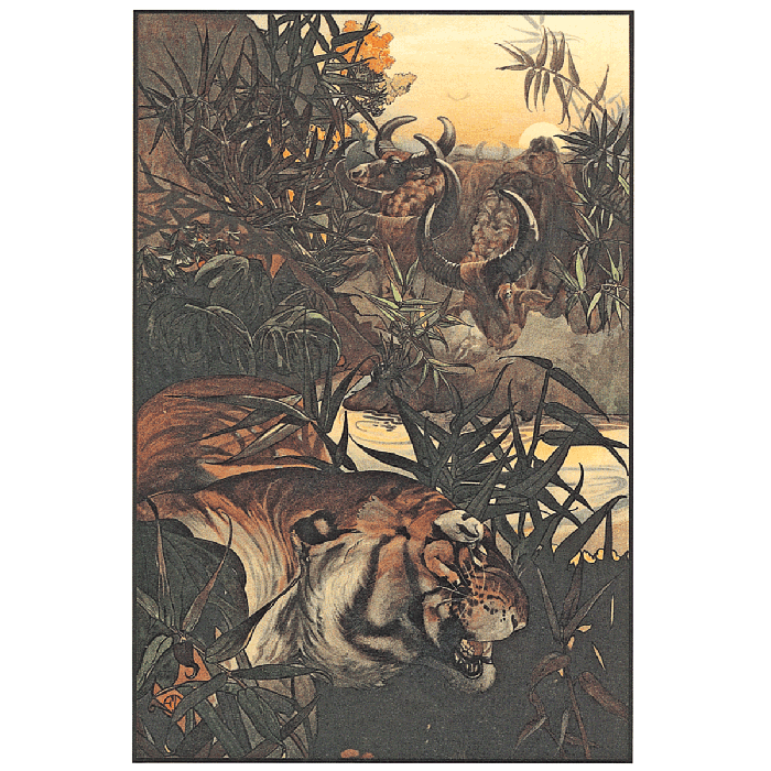Image of The Jungle Book book