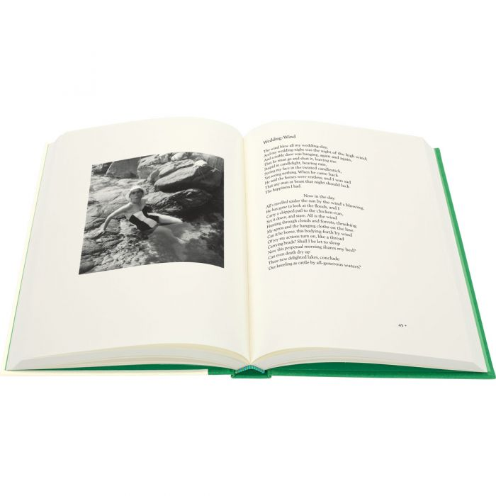 Image of Collected Poems book