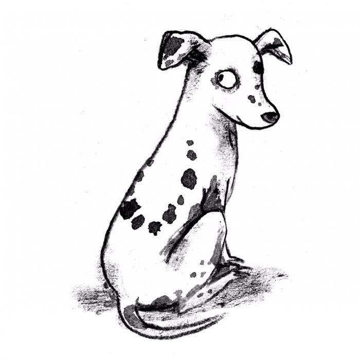 Image of The Hundred and One Dalmatians book