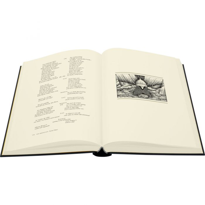 Image of Ring of the Nibelung book