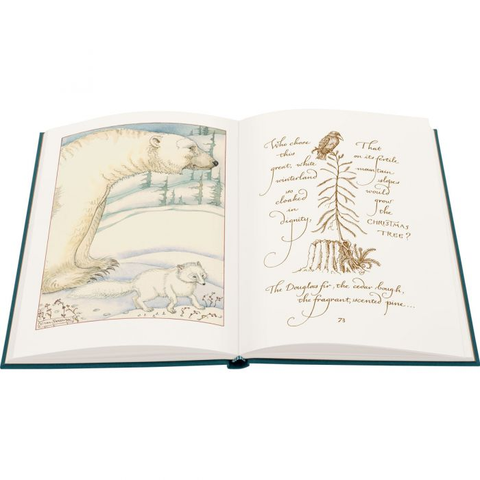Image of Mr Rabbit's Symphony of Nature and Other Tails book
