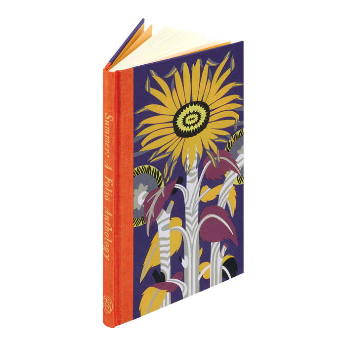 Image of Summer book