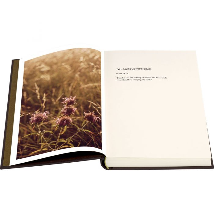 Image of Silent Spring book