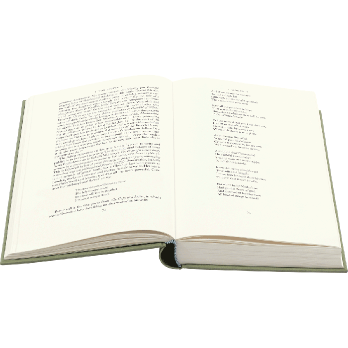 Image of The Time Traveller's Guide to Elizabethan England book