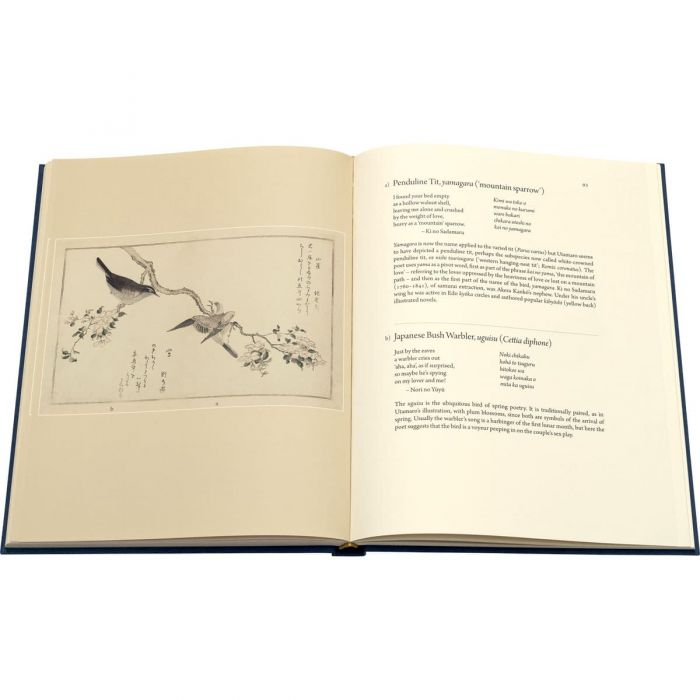 The commentary with translations and notes alongside the illustration to which they refer