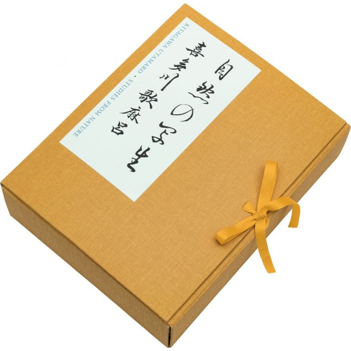 The presentation box secured with grosgrain ribbon