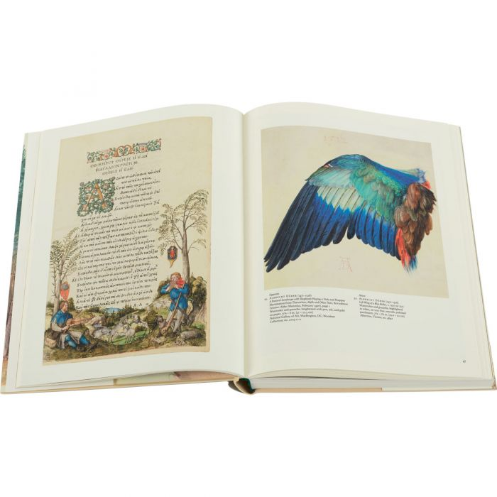 Image of Watercolor: A History book