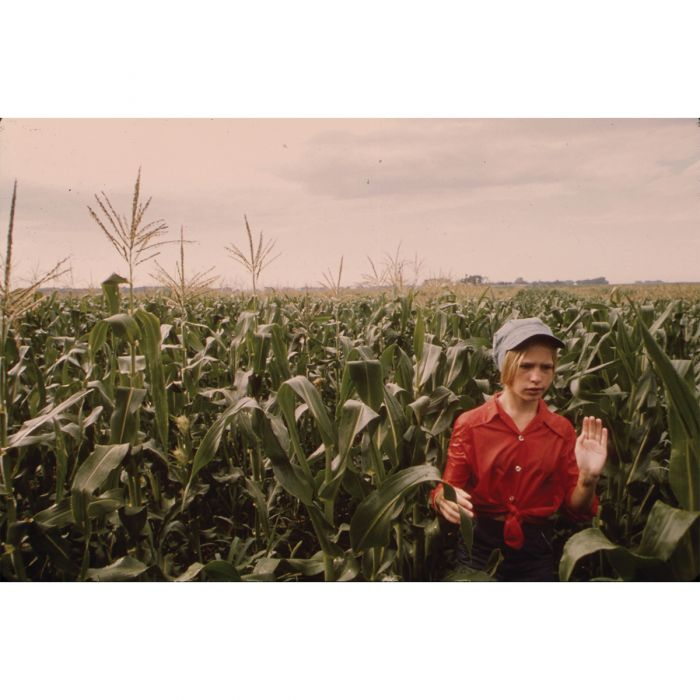 Detaseling corn, Minnesota, 1973/Flip Schulke © DOCUMERICA/NARA